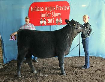 Reserve Late Junior Champion Heifer