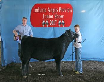 Bred-and-owned Reserve Senior Heifer Calf Champion