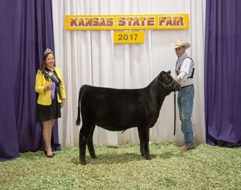 Heifer Calf Champion