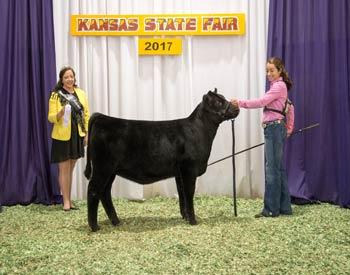 Reserve Heifer Calf Champion