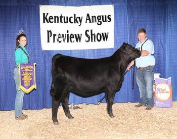 Early Senior Heifer Calf Champion