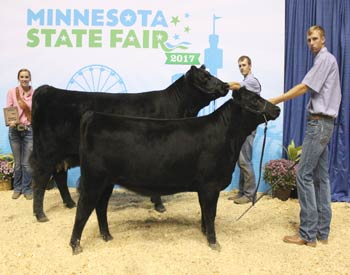 Grand Champion Cow-calf Pair