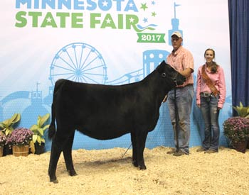 Reserve Junior Heifer Calf Champion