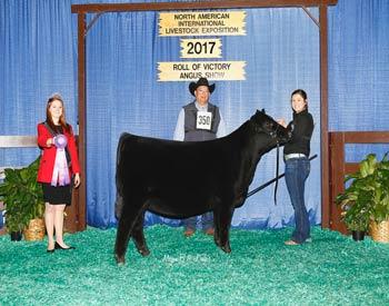 Winter Heifer Calf Champion