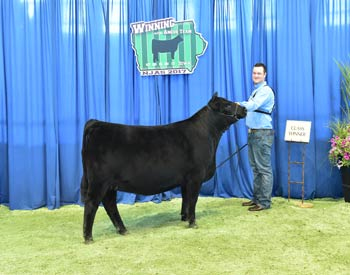 Owned Heifer Class 38