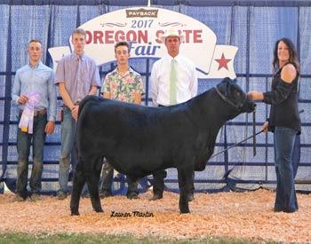 Reserve Junior Bull Calf Champion