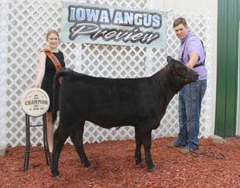 Bred-and-owned Junior Heifer Calf Champion