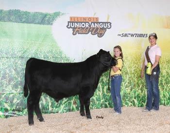 Bred-and-owned Senior Bull Calf Champion