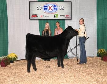 Owned Senior Heifer Calf Champion