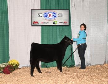 Owned Reserve Junior Heifer Calf Champion