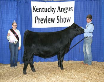Owned Reserve Early Junior Champion Heifer