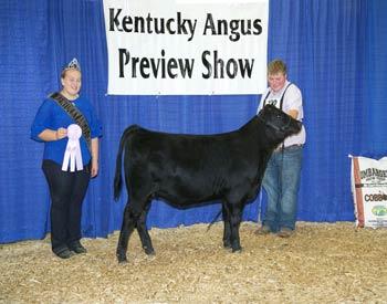 Reserve Late Senior Heifer Calf Champion