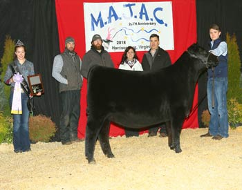 Owned Reserve Late Junior Champion Heifer