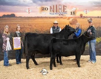 Reserve Grand Champion Cow-calf Pair