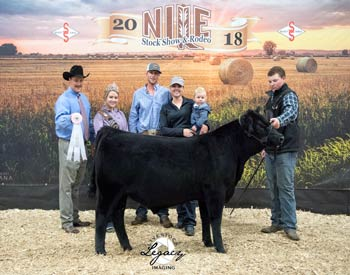 Reserve Grand Champion Bred-and-owned Bull