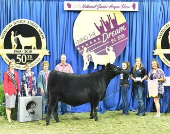 Owned Reserve Junior Champion--Division 7