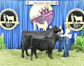 Owned Cow-calf Class 5