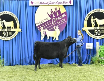 Owned Heifer Class 29