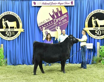 Owned Heifer Class 36