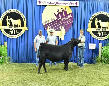 Owned Heifer Class 7