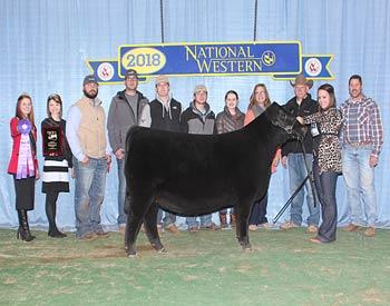 Late Winter Heifer Calf Champion