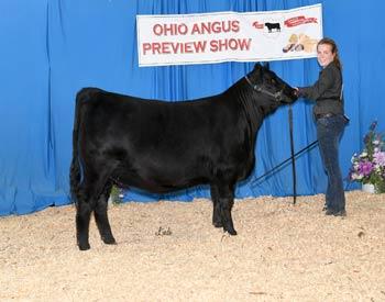 Owned Reserve Junior Champion Heifer