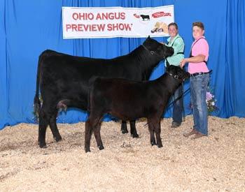 Grand Champion Cow-calf Pair