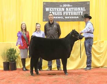 Fall Heifer Calf Champion