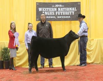 Reserve Fall Heifer Calf Champion