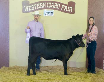 Reserve Grand Champion Bred-and-owned Female