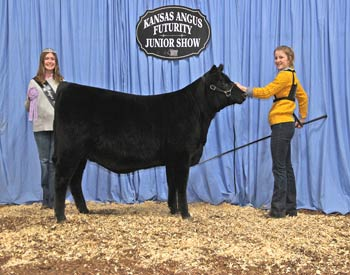 Bred-and-owned Reserve Heifer Calf Champion