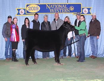 Summer Heifer Calf Champion