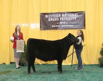 Early Heifer Calf Champion