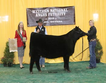 Owned Reserve Late Spring Heifer Calf Champion