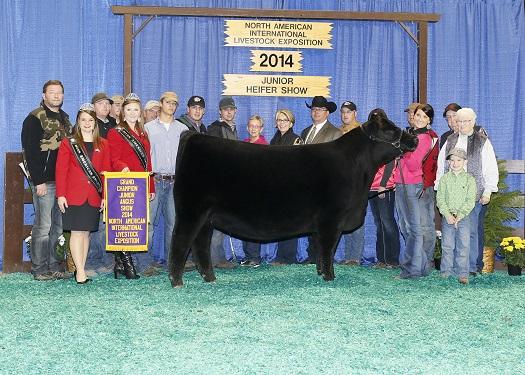 2014 North American International Livestock Exposition